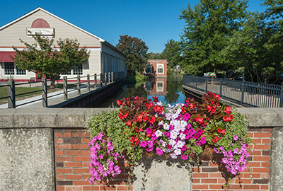 milford flowers picture